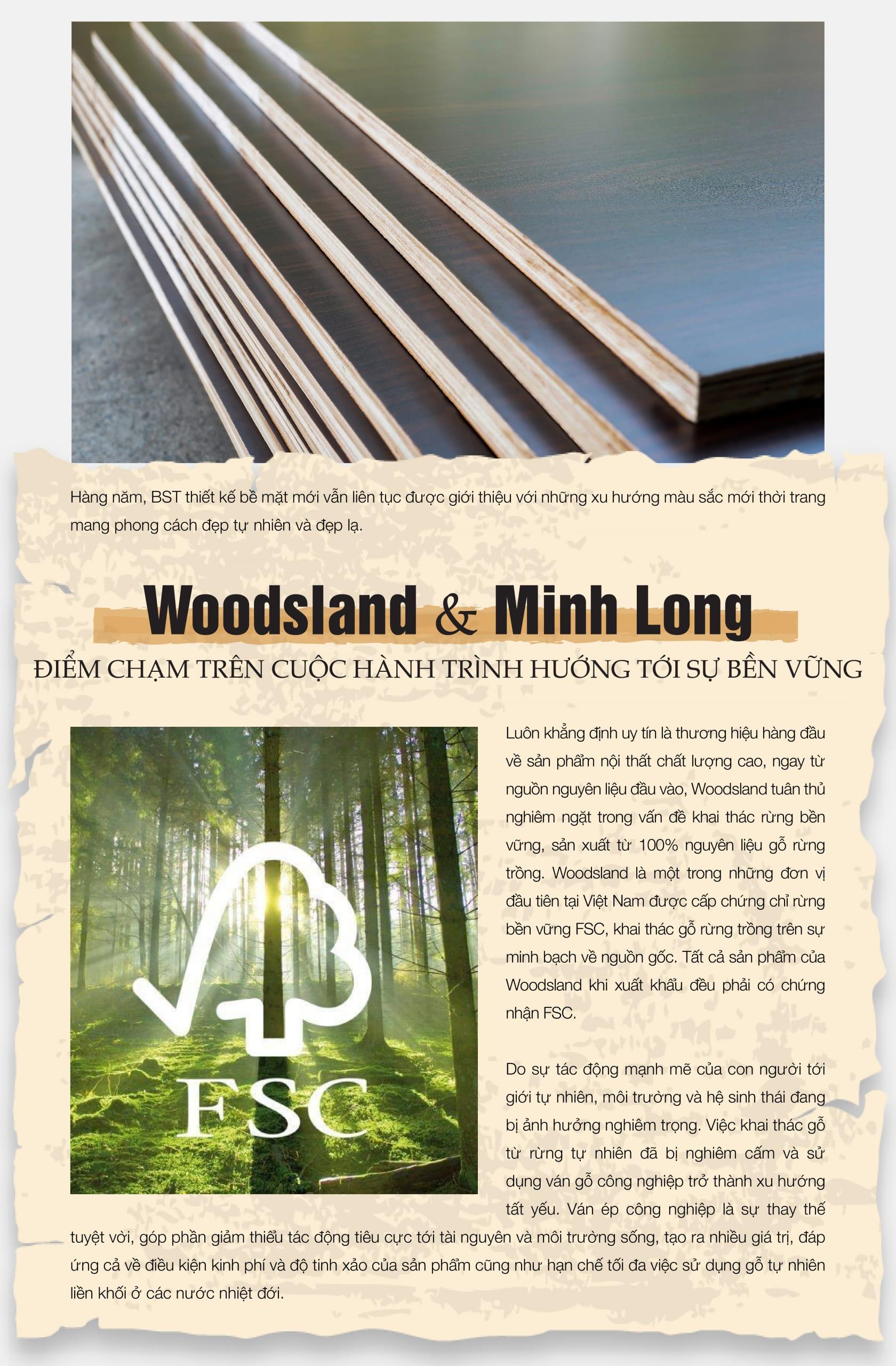 eMagazine tháng 10 - Minh Long - Woodsland - hành trình hướng tới sự bền vững -4